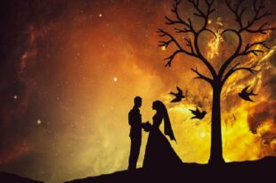سایت دالپری_فال شبانه_nightly horoscope_دالپري_www.dalpari.com